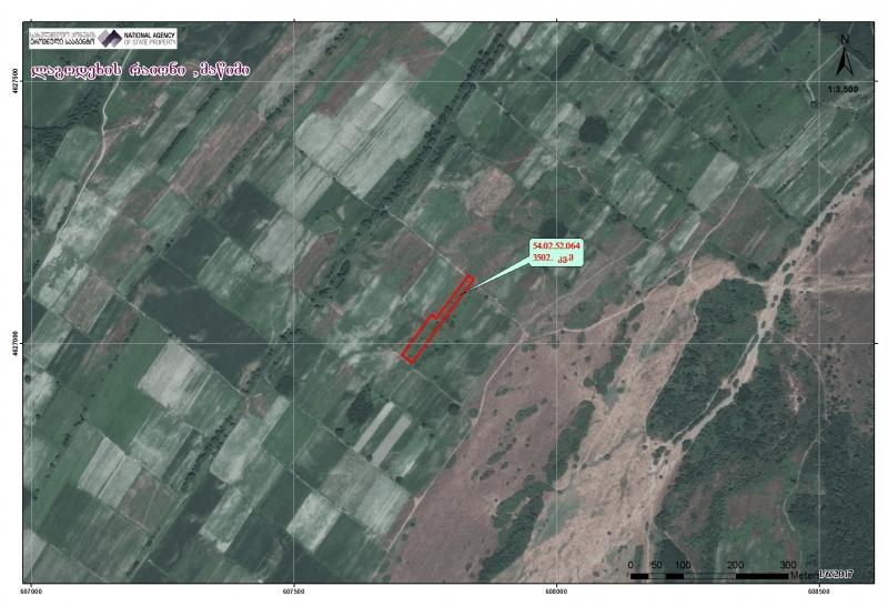 ლაგოდეხის რაიონში, მაწიმში მდებარე 3502 კვ.მ სასოფლო-სამეურნეო (სახნავი) დანიშნულების მიწის ნაკვეთი