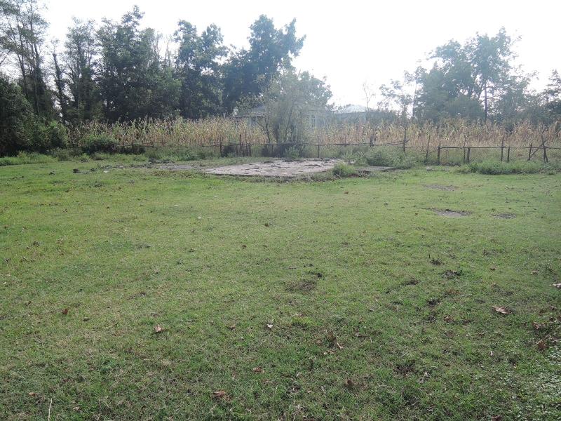ხობის მუნიციპალიტეტში, სოფელ პირველ ხორგაში მდებარე 649.00 კვ.მ. არასასოფლო-სამეურნეო დანიშნულების მიწის ნაკვეთი და მასზე არსებული N1 (ნანგრევი) შენობა-ნაგებობა.