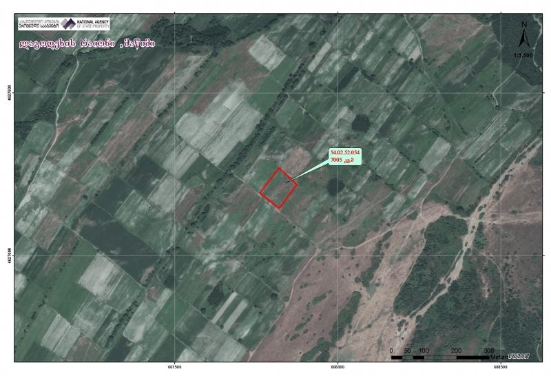 ლაგოდეხის რაიონში, მაწიმში მდებარე 7005 კვ.მ სასოფლო-სამეურნეო (სახნავი) დანიშნულების მიწის ნაკვეთი